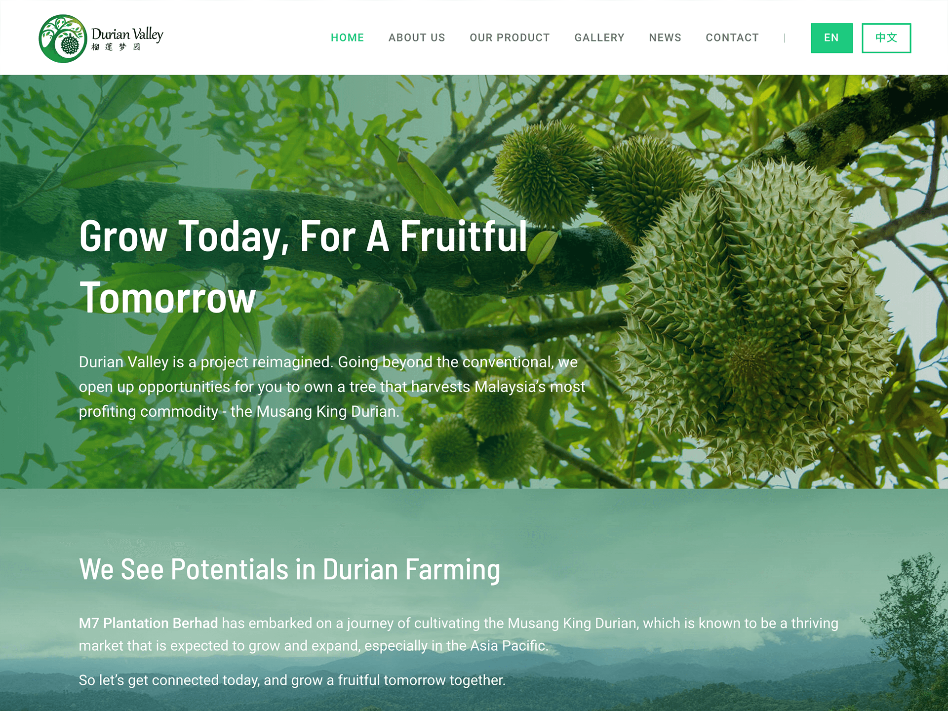 Durian Valley website